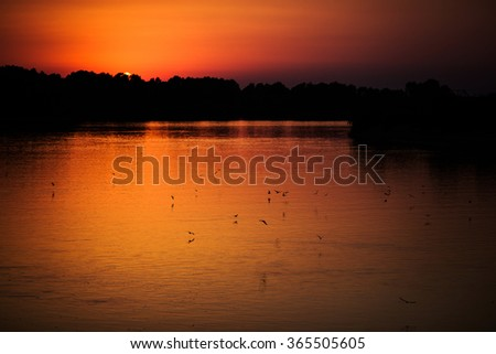 beautiful orange sunset over the river, the river at sunset, birds flying over the water, the sun get behind the horizon, copy space - stock photo