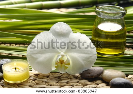 Beautiful orchid and stones with green plant and massage oil on wicker mat