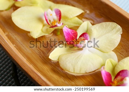 Beautiful orchid flowers in water close-up - stock photo