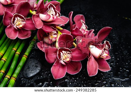 Beautiful orchid with stones on bamboo grove on wet background - stock photo