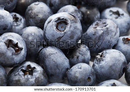 Beautiful organic background made of freshly picked blueberries - stock photo