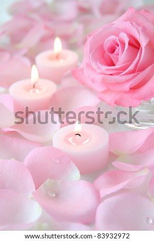 Beautiful pale pink rose with aroma candles on rose petal background