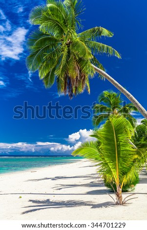 Beautiful palm tree beach on Cook Islands on a hot sunny day - stock photo
