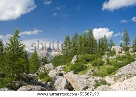 beautiful panorama in italian Dolomites with green meadow pine trees and mountain - stock photo