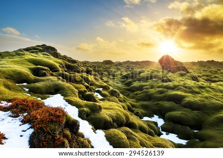 Beautiful panorama of the amazing volcanic mossy landscape of Eldhraun at sunrise in Iceland - stock photo