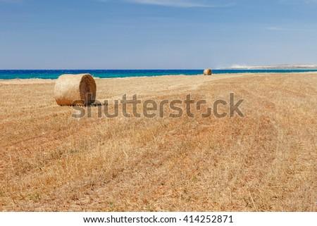 Beautiful panoramic view on straw field with bales on sea coast near of Ayia Napa and Cavo Greco, Cyprus island, Mediterranean Sea. Bright sunny day. - stock photo
