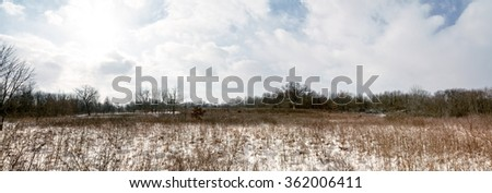 Beautiful panoramic winter scene at a prairie  with a dusting of snow covering the tall grasses. - stock photo