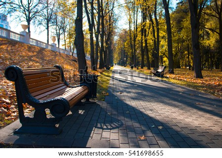 beautiful park in autumn