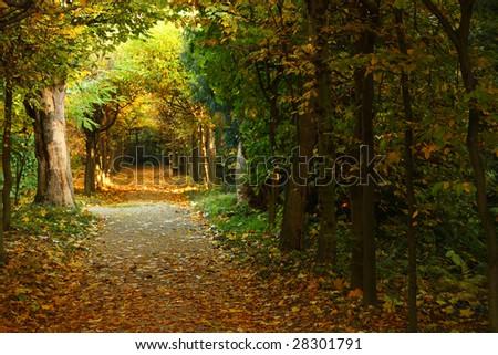 Beautiful park in Buchlovice - stock photo