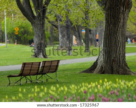 Beautiful park in spring - stock photo
