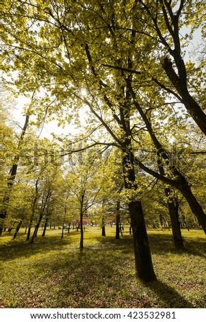 Beautiful park in Zagreb, Croatia - stock photo
