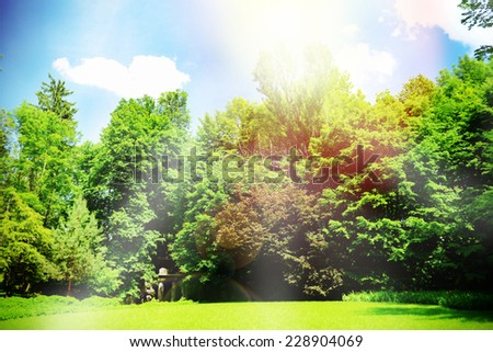 Beautiful park outdoors - stock photo