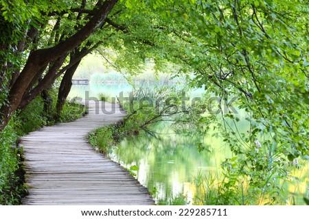 Beautiful path at the lake - stock photo