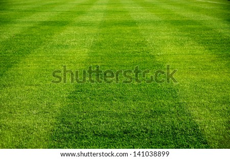 beautiful pattern of fresh green grass for football sport, football field, soccer field, team sport texture - stock photo