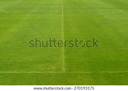 beautiful pattern of fresh green grass for football sport, football field, soccer field, team sport texture - stock photo