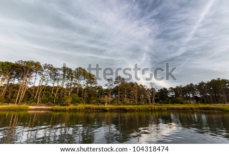Beautiful pine tree island scenery and ocean cloud reflection on a warm summer day