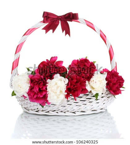 beautiful pink and white peonies in basket with bow isolated on white