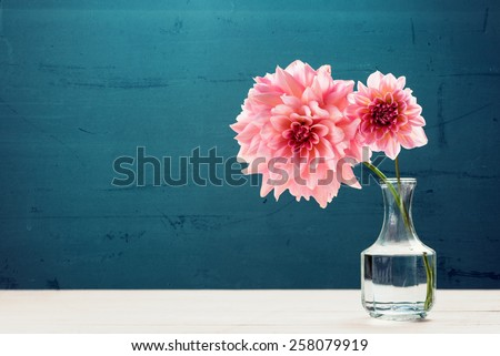 Beautiful pink flowers in vase - stock photo