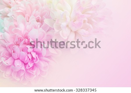beautiful pink flowers made with color filters - stock photo