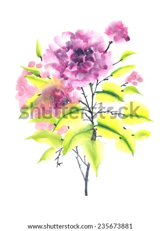 Beautiful pink flowers. Watercolor oriental style hand painting illustration. - stock photo
