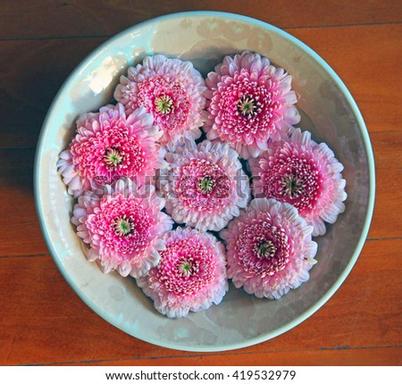 Beautiful pink Gerber flowers in a ceramic bowl on a wooden floor - stock photo