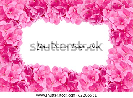 beautiful pink hydrangeas arranged to make a floral frame or border - stock photo