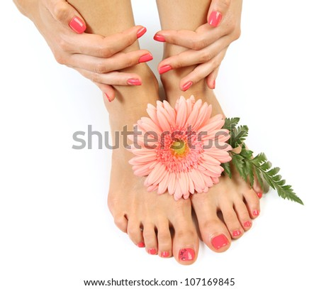 Beautiful pink manicure and pedicure - stock photo