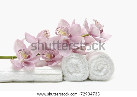 beautiful pink orchid on white towel - stock photo