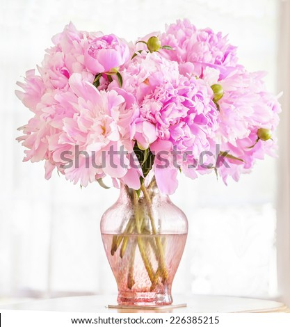 Beautiful pink peonies in a pink glass vase in front of a lace covered window. - stock photo