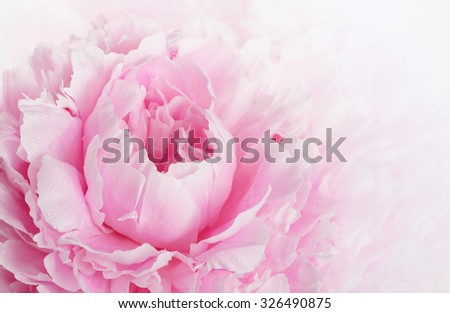 Beautiful pink peony background in vintage style - stock photo