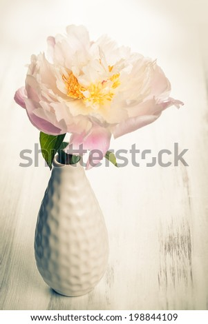 beautiful pink peony in vase,vintage style - stock photo