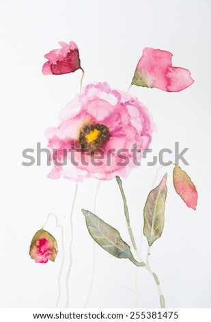 Beautiful pink poppies on white ; Watercolor painting - stock photo