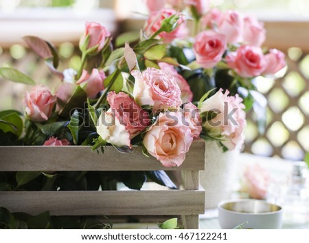 Beautiful pink roses in a wooden box