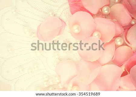 Beautiful pink roses on a soft background - stock photo