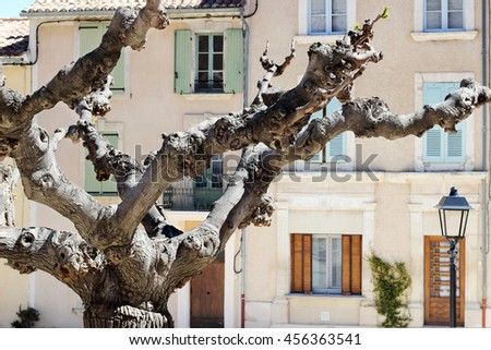 Beautiful plane-tree at the typical street with old houses of a village in La Provence, wooden doors, windows, old street lamps, beautiful view, focus on the tree, outdoors - stock photo