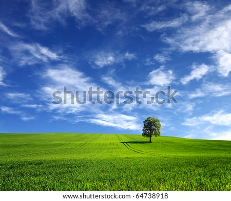 Beautiful planet - stock photo