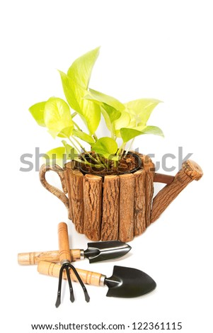 beautiful plant in a flowerpot  and garden tools isolated on white - stock photo