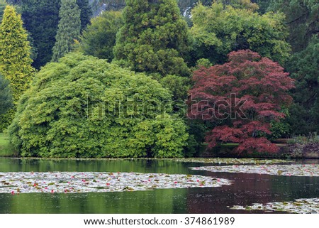 Beautiful pond in a Botanical garden - stock photo