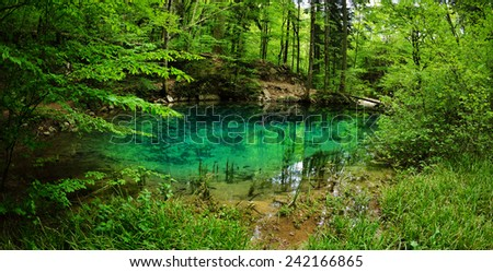 beautiful pond in the woods, Caras Severin county, Romania - stock photo