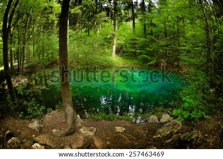 beautiful pond in the woods, Ochiul Beiului, Caras Severin county, Romania - stock photo