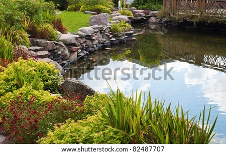 Beautiful pond with exotic fish - stock photo
