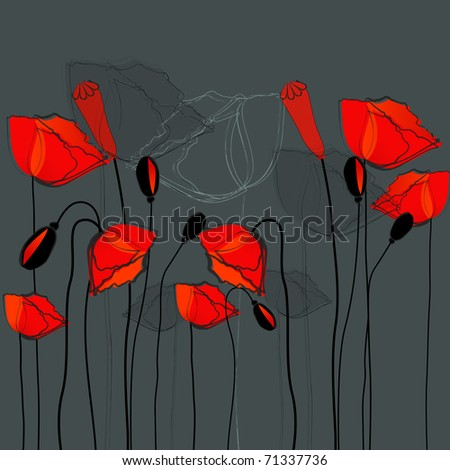 Beautiful poppies illustration - stock photo