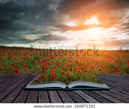 Beautiful poppy field landscape during Summer sunset with dramatic sky conceptual book image - stock photo