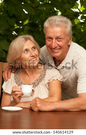 beautiful portrait of an elderly couple outdoors