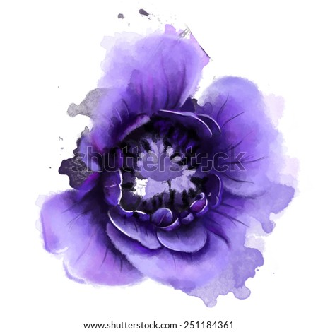 Beautiful purple flower anemones, Watercolor, painting - stock photo
