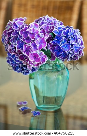 Beautiful purple hydrangea flowers in a blue vase  on a table. - stock photo
