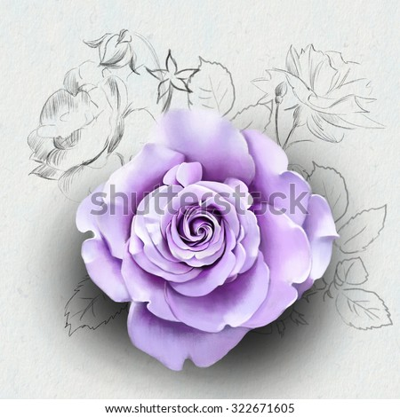 beautiful purple rose close up, with elements of the sketch, watercolor illustration isolated on white background - stock photo
