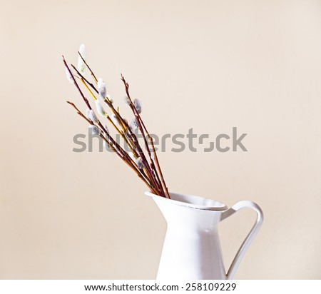 Beautiful pussy willow flowers branches in vase. Soft floral spring frame with very shallow DOF  - stock photo