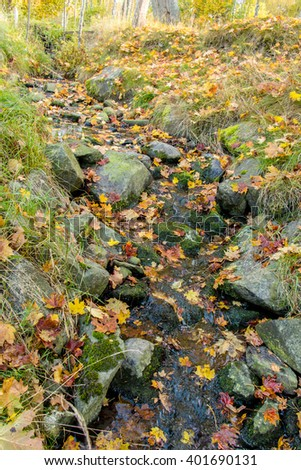 Beautiful quiet cascade waterfall in autumn forest. Yellow maple leaves on the green moss stones and on green grass. Autumn background with fallen leaves, moss, rocks and flowing stream. Sweden nature - stock photo