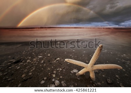 beautiful rainbow at sunset on the beach with a starfish in the foreground - stock photo